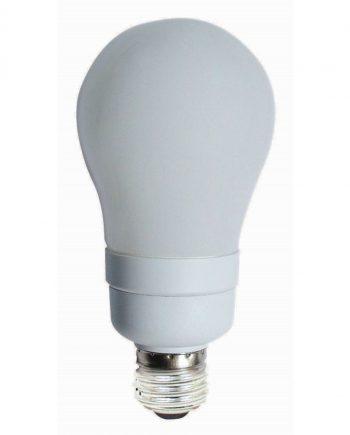 Classic Shape Lamps
