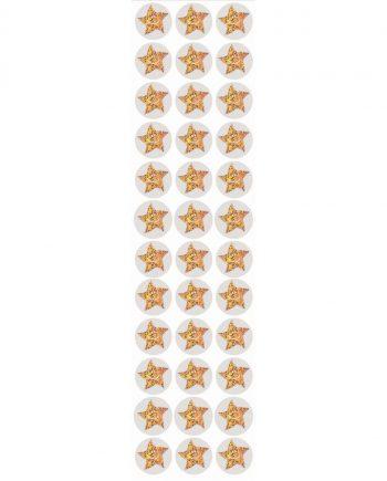 Gold Star Mini Stickers