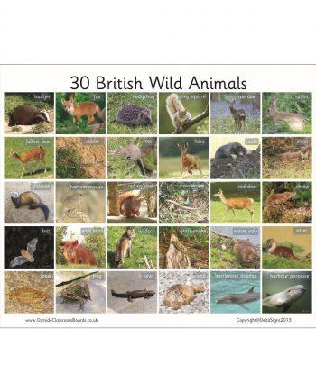 British Wild Animals Board