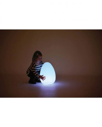Egg Light Box
