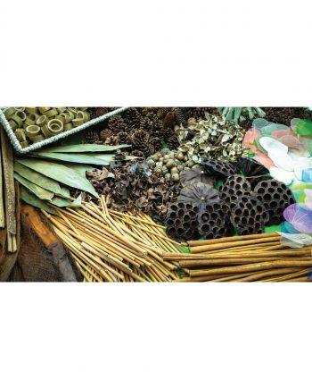 Botanical Treasure Basket