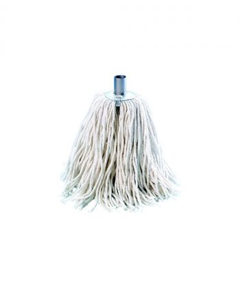Domestic Floor Mop