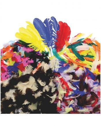 Bumper Feathers Classpack
